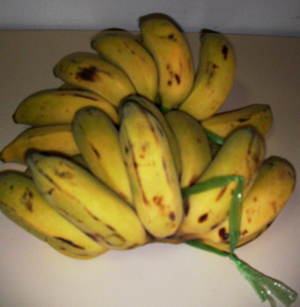 ซื้อกล้วยแถม holder