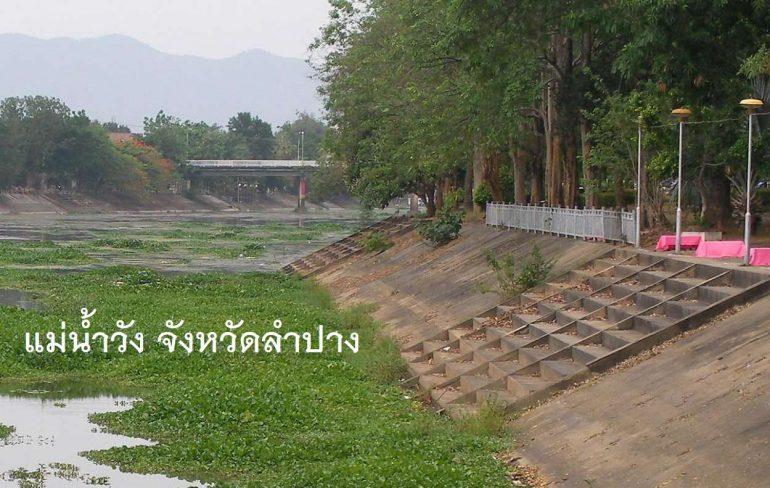 วัชพืชเต็มแม่น้ำ